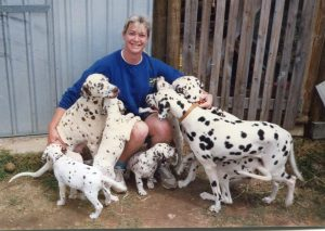 Lisa Ride with Luckywood Dalmatians about 1992
